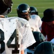American football team in huddle — Stock Photo #30127739