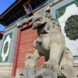 Stone lion of china - Stock Photo
