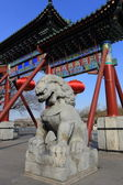 The stone lion of china — Stok fotoğraf