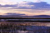 Sunrise of river — Stock Photo