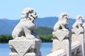 White Marble Carved Lions — Stock Photo