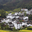 Chinese village in spring — Stockfoto