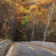 Road in Autumn — Stock Photo #35463041