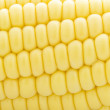 Corn, full frame — Stock Photo #32939721