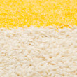 Stock Photo: Rice,corn grits