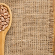 Dried beans — Stock Photo #41842853