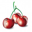 Three fresh cherries — Stock Vector