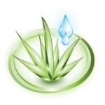 Aloe vera with blue drop — Stock Vector