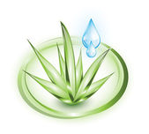 Aloe vera with blue drop — Vetor de Stock