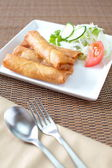 Fried Egg Rolls — Stock Photo