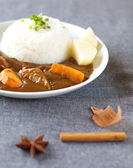 Curry with rice in Japanese style — Stockfoto