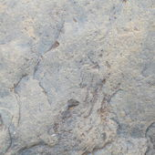Grå betongmur — Stockfoto