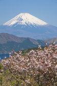 Mountain Fuji and Achi lake in winter season — Stock Photo