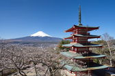 Mountain Fuji in spring ,Cherry blossom Sakura — 图库照片