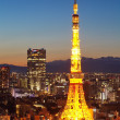 Tokyo city view and Tokyo tower at twilight — Photo #40779321