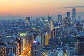 View of Tokyo city — Stock Photo