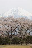 Fuji montaña en invierno — Foto de Stock