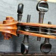 Detail of old violin  — Foto Stock