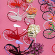 Miniature bicycles — Stock Photo #24541317