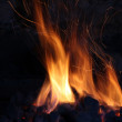 Fire in the old stone fireplace — Stock Photo #38805491