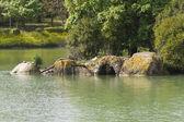 景观湖 — 图库照片