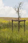 холмистый пейзаж — Стоковое фото