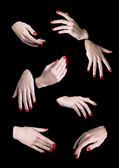 Eight Woman Hands Isolated — Stock Photo