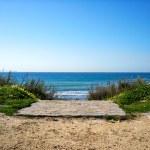 Path to the Beach. Tarifa. Andalusia. Spain — Stock Photo #43313237