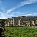 Baelo Claudia Roman Ruins. Tarifa, Cadiz, Spain — Stock Photo