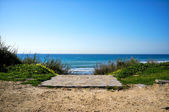 Path to the Beach. Tarifa. Andalusia. Spain — Stock Photo