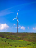 Windmill on green meadow. Spain ecologist — Foto Stock