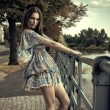 Woman  Fashion brunette  — Lizenzfreies Foto