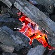 Stock Photo: Red-hot charcoal briquettes ready for barbecue grill