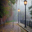 The mysterious alleyway in foggy autumn time with lighted lamps — Stock Photo #38357271