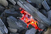 Red-hot charcoal briquettes ready for barbecue grill — Stock Photo