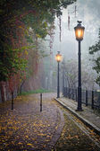 The mysterious alleyway in foggy autumn time with lighted lamps — Stock Photo