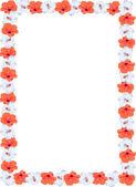 Orange and white Hibiscus border — Stock Photo