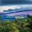 Queens View Tillylodge Slack Tarland Coull — Stock Photo