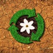 Ecological concept - grass recycle sign on a cracked ground — Stock Photo
