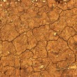 Royalty-Free Stock Photo: Dry cracked ground