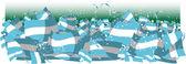 阿根廷球迷 — 图库矢量图片
