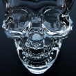 Glass Skull — Stock Photo