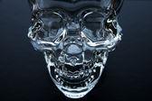 Glass Skull — Stock Photo