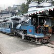Tourist Steam Train at Ghum (146) - Stock Photo