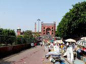 Jama Masjid East Gate (132) — Stock Photo