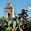 Stock Photo: Rabat Cathedtal Tower rising above prickly pear cactus