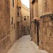 Traditional Maltese Alleyway (Triq SPietru, Mdina) — Stock Photo #35149343