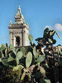 Rabat Cathedtal Tower rising above a prickly pear cactus — Stock Photo