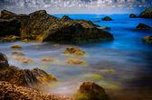 камни, море и зеленые водоросли — Стоковое фото