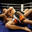 November 25th. 2012. Croatia defeats Poland in Ultimate Fighting Challenge - Stock Photo
